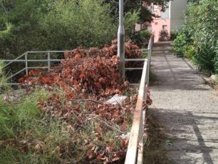 Građani javljaju i pitaju: Tko mora pokupiti posječenu vegetaciju nakon akcije čišćenja okućnice?