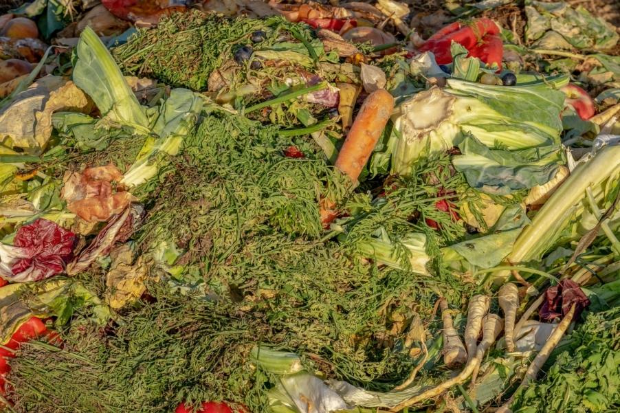 Susjedski savjeti: Kompostiranje i fermentiranje – čarobno zbrinjavanje biootpada na kućnom pragu